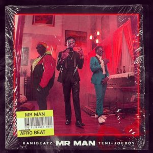 Lyrics of KaniBeatz - Mr Man ft Teni&Joeboy